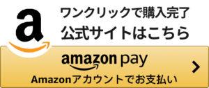 購入 簡単 アマゾンペイ 支払い